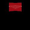 rigas stradina universitate logo png